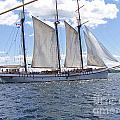Tall Ship 5 by Tom Doud