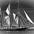 Tall Ship Bw by Steve Harrington