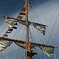 Tall Ship Mast by Suzanne Gaff