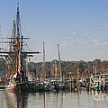 Tall Ship Reflection by Lauren Brice