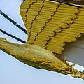 Tall Ship Uscg Barque Eagle Masthead by Dale Powell