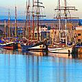 Tall Ships by Bill  Robinson