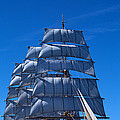 Tall Ships Race In The Ocean, Baie De by Panoramic Images