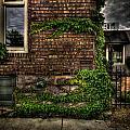 Tall Window by Mike Oistad