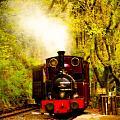 Talyllyn Railway 2 by Mark Llewellyn