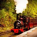 Talyllyn Railway 4 by Mark Llewellyn