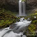 Tamawanas Falls In Summer by Jackie Follett