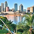 Tampa Bay Florida by Frozen in Time Fine Art Photography