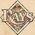 Tampa Bay Rays Vintage Art by Florian Rodarte