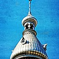 Tampa Beauty - University Of Tampa Photography By Sharon Cummings by Sharon Cummings