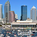 Tampa Panoramic Work D by David Lee Thompson