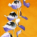 Tangerine Sky by Jacqueline McReynolds