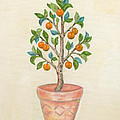 Tangerine Tree by Annamarie Lombardo