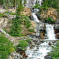 Tangle Falls Along Icefield Parkway In Alberta by Ruth Hager
