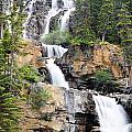 Tangle Falls Tumble by Deanna Cagle