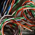 Tangle Of Colorful Wires by Amy Cicconi