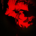 Tango Of Passion For You by Jenny Rainbow