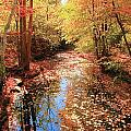 Tanners Brook by Robert McCulloch