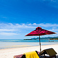Tanning Beds On A Tropical Beach Koh Samui Thailand by Fototrav Print