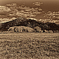 Taos Mountain In Platinum  by Charles Muhle