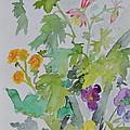 Taos Spring by Beverley Harper Tinsley