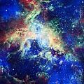 Tarantula Nebula 4 by Jennifer Rondinelli Reilly - Fine Art Photography