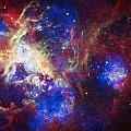 Tarantula Nebula 6  by Jennifer Rondinelli Reilly - Fine Art Photography