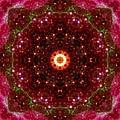 Tarantula Nebula II by Derek Gedney