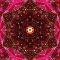 Tarantula Nebula IIi by Derek Gedney