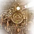Tarantula Train by David and Carol Kelly