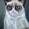 Tard - Grumpy Cat by Tom Carlton
