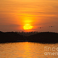 Tarpon Bay Sunset 2 by Chris Scroggins
