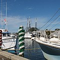 Tarpon Springs Fishing Boats  by Christiane Schulze Art And Photography