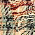 Tartan Scarf by Tom Gowanlock