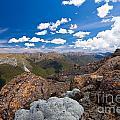 Tasman Mountains Of Kahurangi Np In New Zealand by Stephan Pietzko