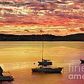 Tasmanian Suset by Ben Yassa