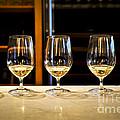Tasting Wine by Elena Elisseeva