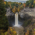 Taughannock Falls by Torrey McNeal