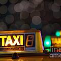 Taxi Signs by Carlos Caetano