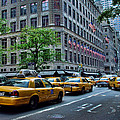 Taxicabs Of New York City by New York