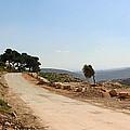 Taybeh Side Road by Munir Alawi