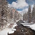 Taylor River Winter by Dusty Demerson