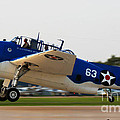 Tbm Avenger by Tommy Anderson