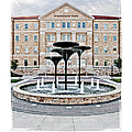 Tcu Frog Fountain by Robin Weerts