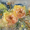 Tea Roses by Judith Levins