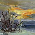 Teanaway Valley Winter by Diane McClary
