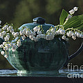 Teapot And Lily Of The Valley by Luv Photography