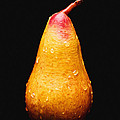 Tears Of A Sad Pear by Andee Design
