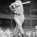 Ted Williams Swing by Gianfranco Weiss