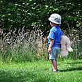 Teddy Bear Walk by Keith Armstrong